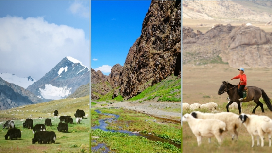 Mongolian National Parks Animal Lovers Need to Visit