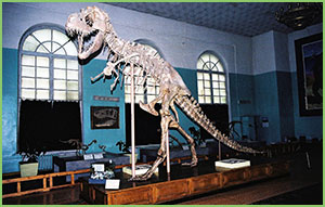 Natural History Museum of Mongolia, Dinosaur museum of Mongolia